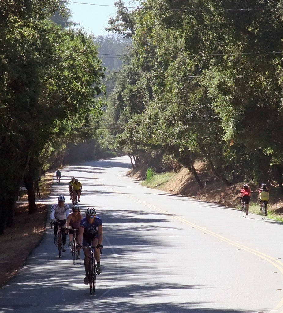 Cyclists on Portola Road near Old LaHonda, part of The Loop