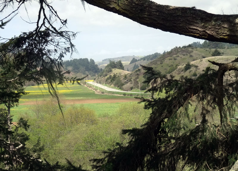 Cloverdale Road between Pescadero & Gazos Creek