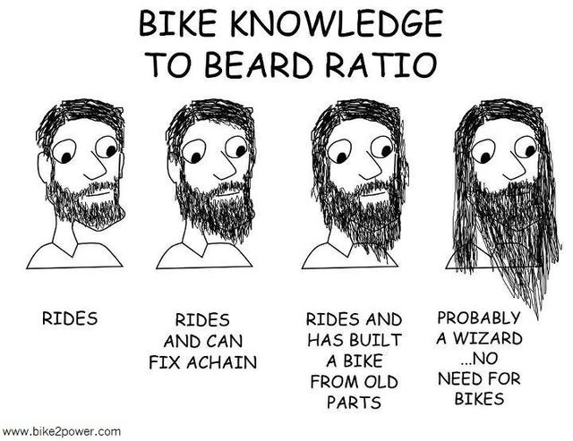 Bike knowledge to beard ratio