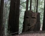 Creepy faces on tree on Old Haul Road