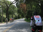 Mtn Home Road in Woodside, always popular with cyclists